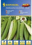 Nasiona i cebule
