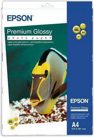 Epson Papier Glossy Photo C13S042169