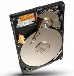 Seagate Momentus ST9500423AS