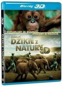 Galapagos DZIKIE Z NATURY 3D (BD 3D)