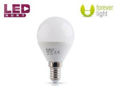 Forever Light arówka LED E14 7W kulka biała zimna 68607