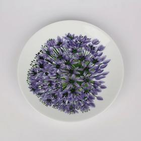 Allium Talerz deserowy 0101002328