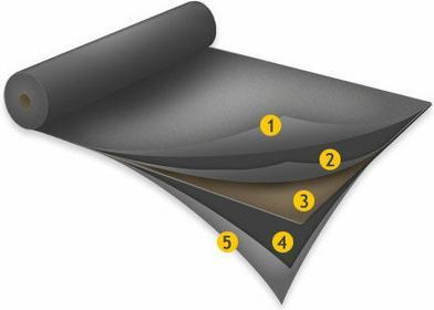 Izobud Papa termozgrzewalna Izobit Standard W-PYE 250 SBS w250s52stand
