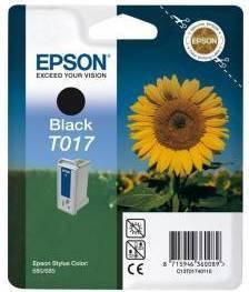 Epson T0174