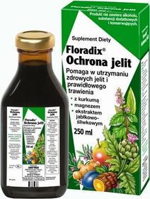 Salus Floradix Ochrona Jelit 250 ml
