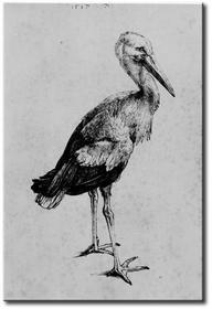 Bimago Obraz Stork 53818