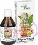 PhytoPharm Wyciąg z kasztanowca (Intractum Hippocastani) 100 g
