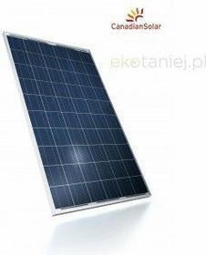Canadian Solar Ogniwo słoneczne polikrystaliczne 240W