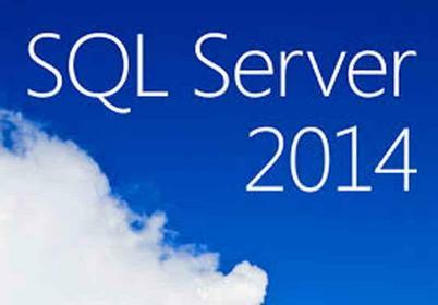 Microsoft SQL Server 2014 Standard Core 2Lic CoreLic MOLP