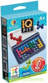 Granna IQ Fit Smart Games