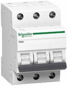 Schneider Electrics Electric Polska Sp. z o.o. SCHNEIDER ELECTRIC Wyłącznik nadprądowy K60