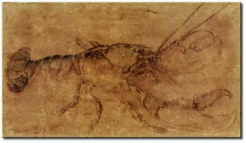Bimago Obraz Lobster 53774