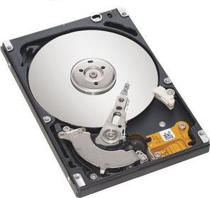 Seagate Momentus Thin ST320LT012