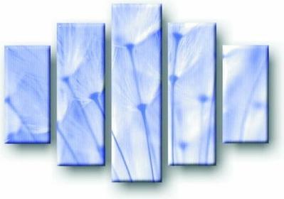 Niebieskie dmuchawce - Obraz na płótnie