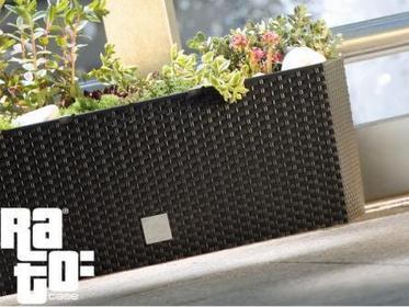 Prosperplast Doniczka samonawadniająca RATO Case DRTC600