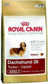 Royal Canin Dachshund 28 6 kg