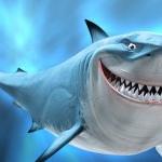 groźny rekin