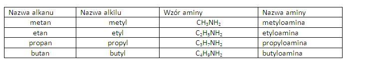 wzory i nazwy soli ćwiczenia chemia nowej ery 2