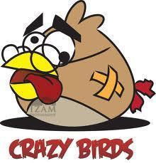 CrazyBirdsxD