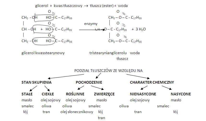 chemia nowej ery 3 sprawdzian substancje o znaczeniu biologicznym