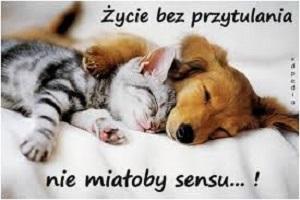 Przytul mnie <3