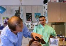 sterylizacja - CENTRUM ZDROWIA I URODY Z... zdjęcie 4