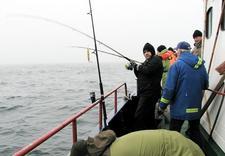 wędki morskie - Wędkarstwo morskie - Koli... zdjęcie 8