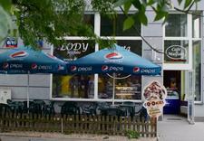 lody - Cafe Malfato. Lody, trady... zdjęcie 1