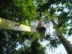 Quercus Tomasz Sysło. Wycinka drzew, pielęgnacja zieli, koszenie trawników