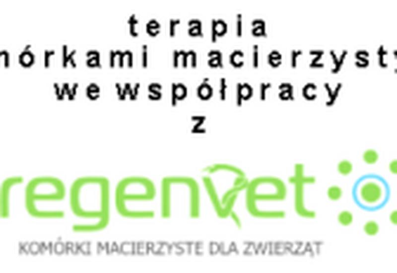 lecznice - AS Lecznica i przychodnia... zdjęcie 6