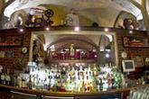 Pod Papugami. Restauracja, kawiarnia, klub muzyczny