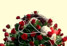 wystrój wnętrz bielsko-biala - BAOBAB kwiaciarnia wysyłk... zdjęcie 4
