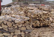 drzewo kominkowe cena - Dariusz Krzykowski. Drewn... zdjęcie 10
