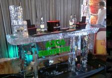 bary lodowe - Ice Evolution. Rzeźby Lod... zdjęcie 8