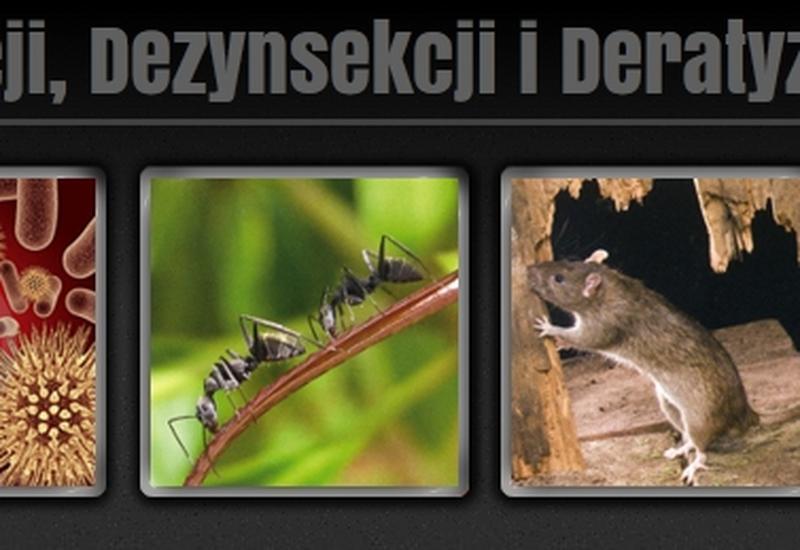 dezynfekcja - Zakład Dezynsekcji, Dezyn... zdjęcie 1