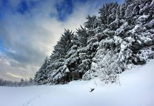 narciarski - Stacja Narciarska Chyrowa... zdjęcie 2
