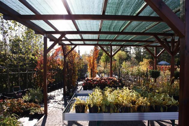 nawozy - Centrum Ogrodnicze BAOBAB... zdjęcie 4