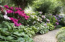 Zaprojektujemy Twój ogród!