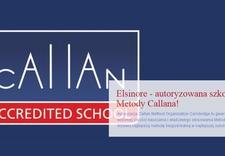 Elsinore School of English - kurs języka angielskiego