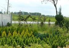 wypozyczalnia sprzetu - Centrum Ogrodnicze Aronia zdjęcie 3