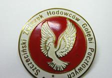 identyfikatory - EUROGRAW zdjęcie 12