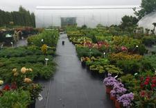 Centrum Ogrodnicze Śnieżek