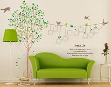 Naklejki na ścianę Drzewo Ramki Zdjęcia