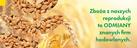 Obrol Kulczyński Sp.J. Nasiona rzepaku, nasiona kukurydzy, zaprawy do rzepaku
