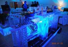 ice show - Ice Evolution. Rzeźby Lod... zdjęcie 2