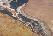 okleiny naturalne - Laminart Sp. z o.o. Blaty... zdjęcie 16