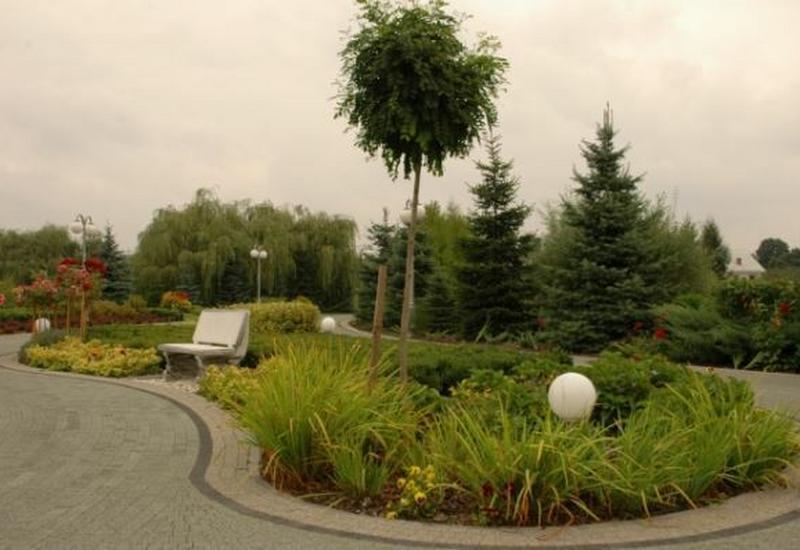 zakładanie trawnika - Gospodarstwo szkółkarskie... zdjęcie 7