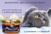 alezwierz.pl
