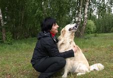 szkolenie psów - Akademia Czterech Łap zdjęcie 2