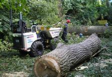 konserwacja rynien - Quercus Tomasz Sysło. Wyc... zdjęcie 3